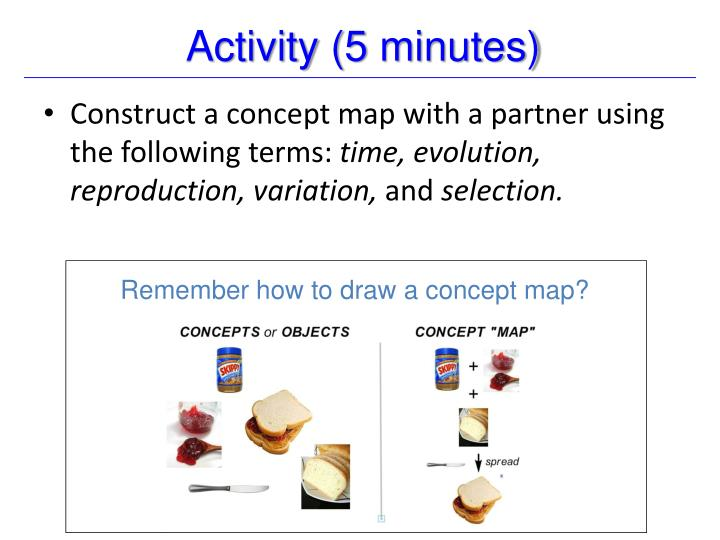 Activity (5 minutes)
