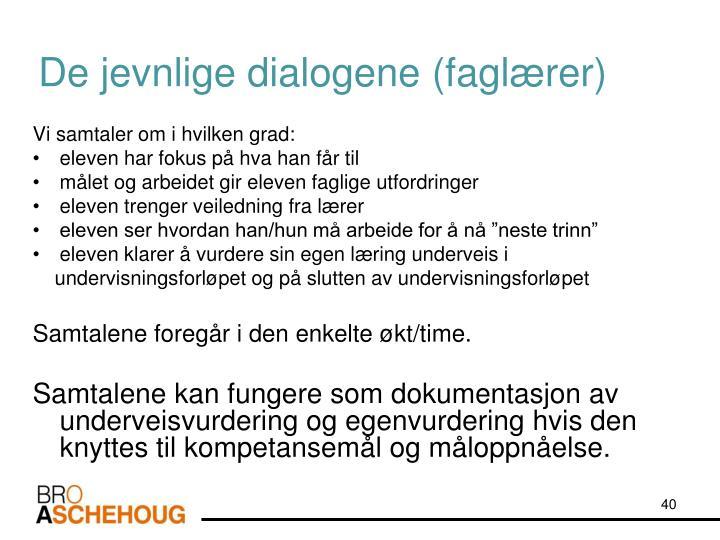 De jevnlige dialogene (faglærer)