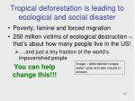 tropical deforestation is leading to ecological and social disaster