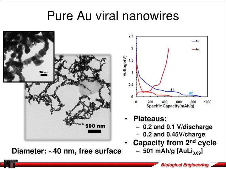 Pure Au viral nanowires
