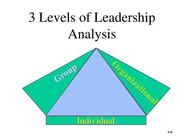 3 Levels of Leadership Analysis