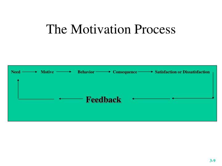 The Motivation Process