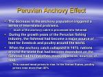 peruvian anchovy effect3