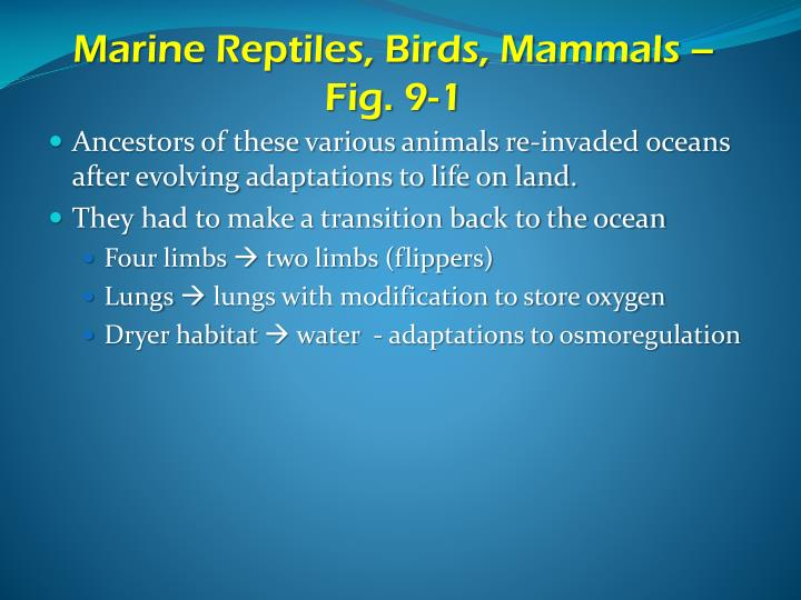 Marine reptiles birds mammals fig 9 1
