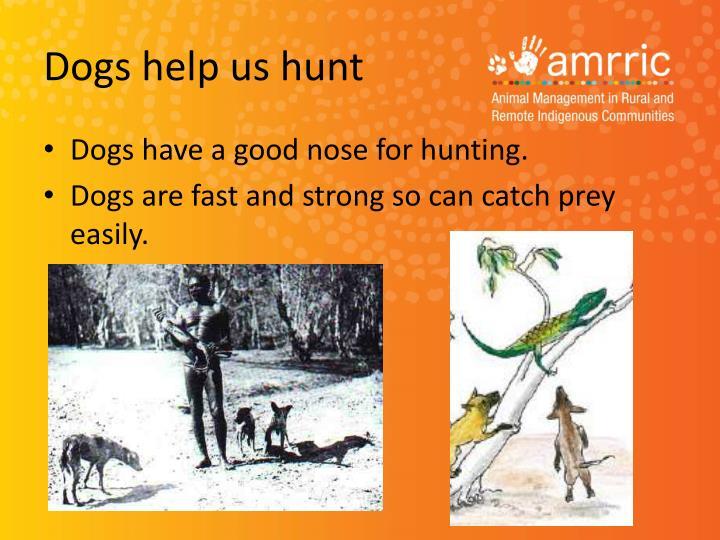Dogs help us hunt