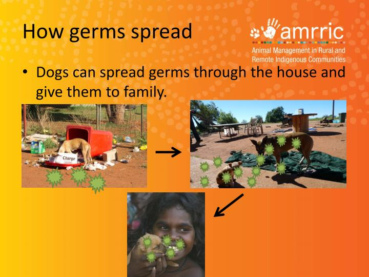 How germs spread