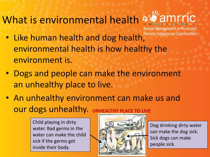 What is environmental health1