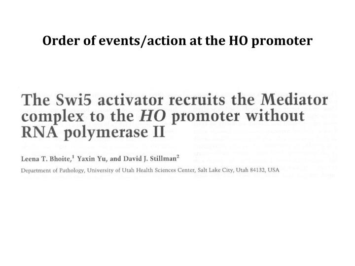 Order of events/action at the HO promoter
