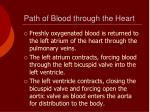 path of blood through the heart2