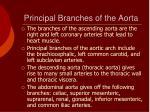 principal branches of the aorta