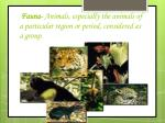 fauna animals especially the animals of a particular region or period considered as a group