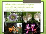 flora plants considered as a group especially the plants of a particular country region or time