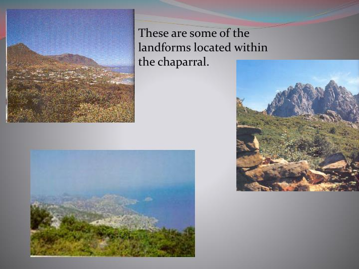 These are some of the landforms located within the chaparral.