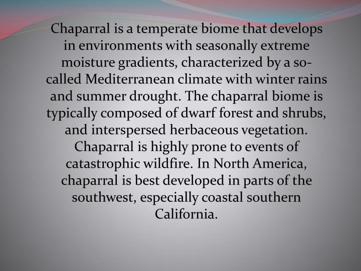 Chaparral is a temperate biome that develops in environments with seasonally extreme moisture gradients, characterized by a so-called Mediterranean climate with winter rains and summer drought. The chaparral biome is typically composed of dwarf forest and shrubs, and interspersed herbaceous vegetation. Chaparral is highly prone to events of catastrophic wildfire. In North America, chaparral is best developed in parts of the southwest, especially coastal southern California.