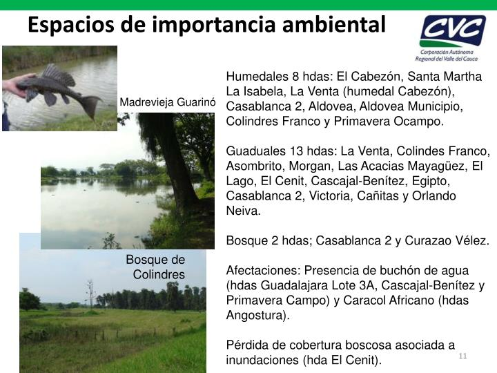 Espacios de importancia ambiental