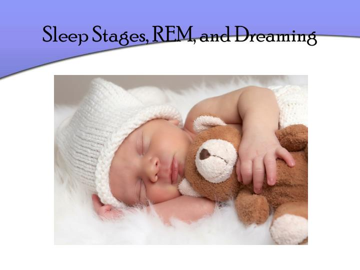 sleep stages rem and dreaming n.