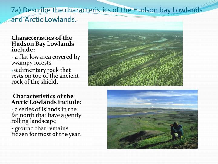 7a) Describe the characteristics of the Hudson bay Lowlands and Arctic Lowlands.