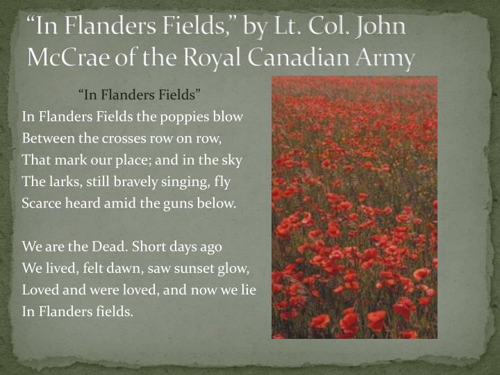 in flanders fields by john mccrae essay The poem, in flanders field by john mccrae, explains the emotions of the soldiers who fought in world war 1 mccrae demonstrates this with the words he uses to set the changing tone of this poem.