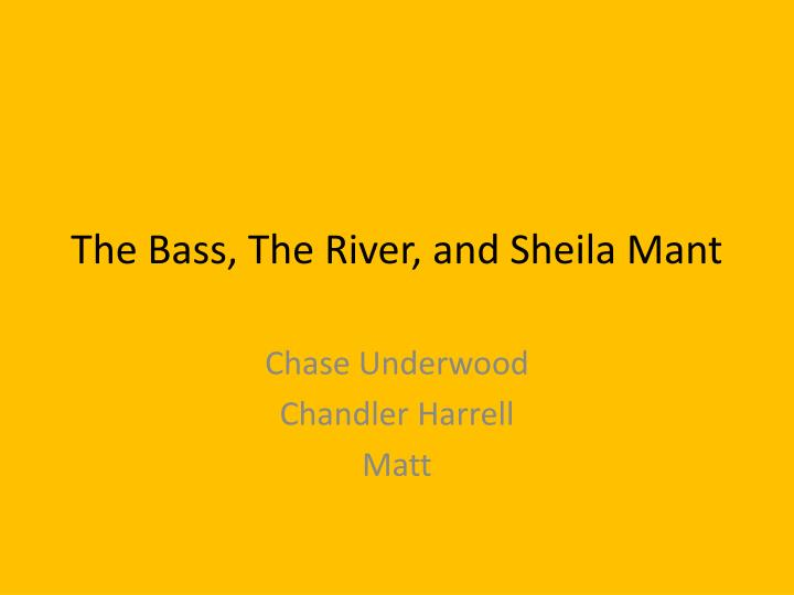 analysis of the bass the river and sheila mant