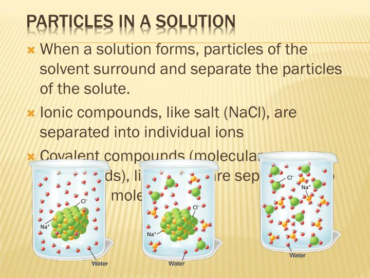 When a solution forms, particles of the solvent surround and separate the particles of the solute.