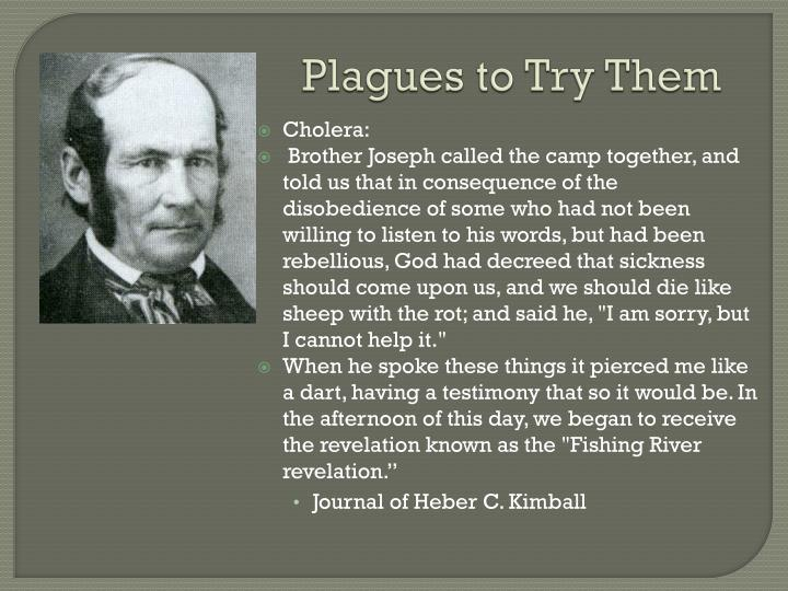 Plagues to Try Them