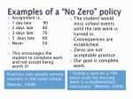 examples of a no zero policy