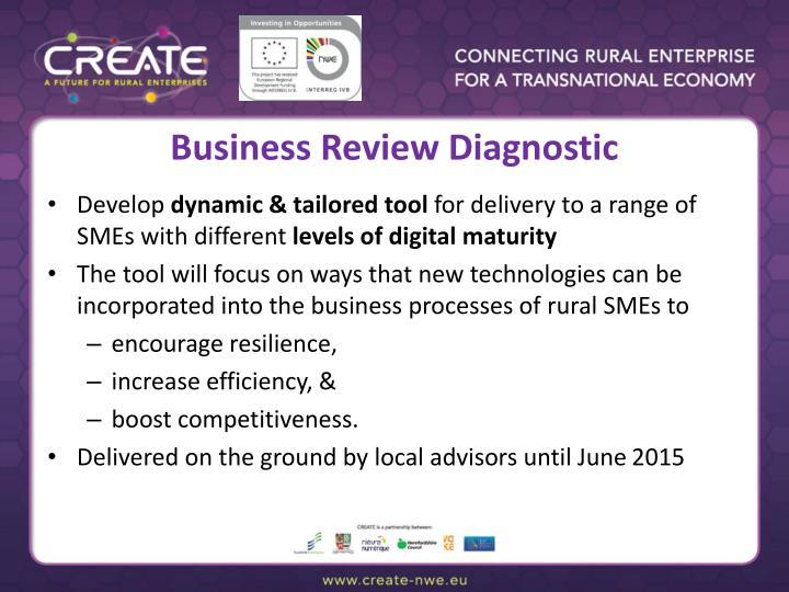 Business Review Diagnostic