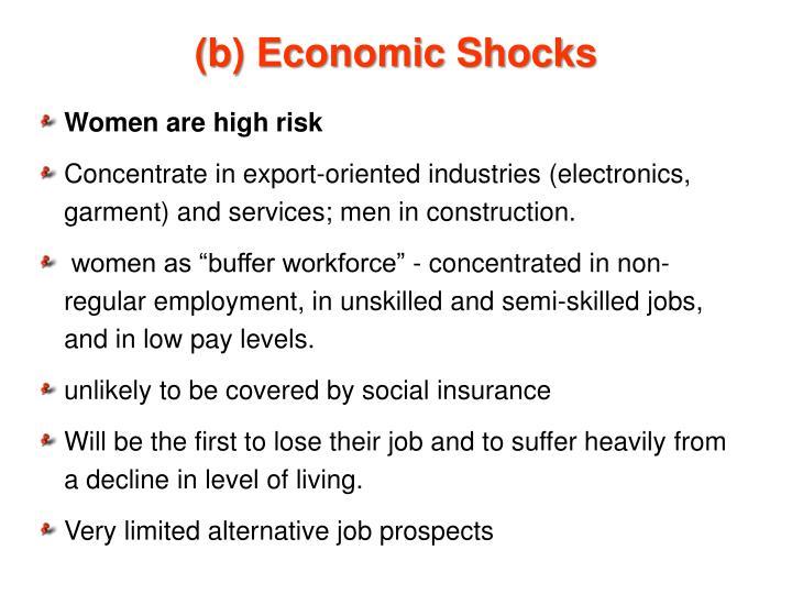 (b) Economic Shocks