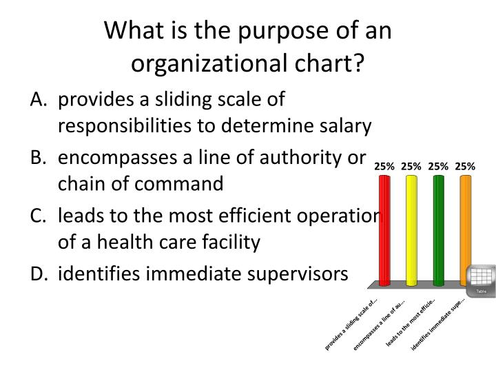 What is the purpose of an organizational chart?