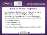 business review diagnostic