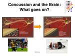 concussion and the brain what goes on1