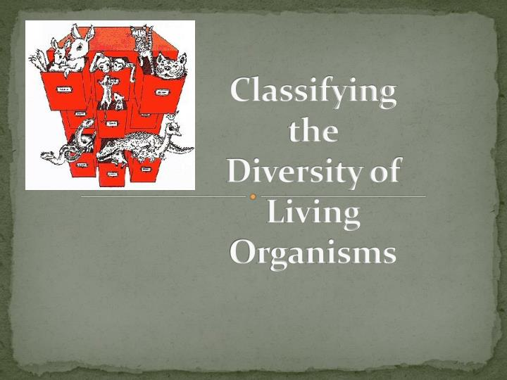 classifying the diversity of living organisms n.