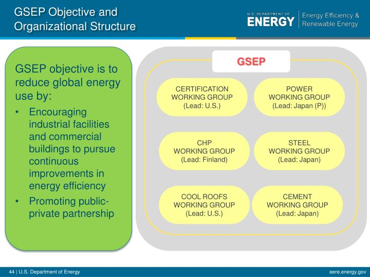 GSEP Objective and Organizational Structure