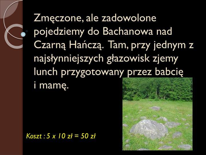 Zmęczone, ale zadowolone pojedziemy do Bachanowa nad Czarną Hańczą.  Tam, przy jednym z najsłynniejszych głazowisk zjemy lunch przygotowany przez babcię