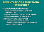 advantage of a functional structure