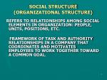 social structure organizational structure