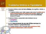il sistema limbico e l ipotalamo