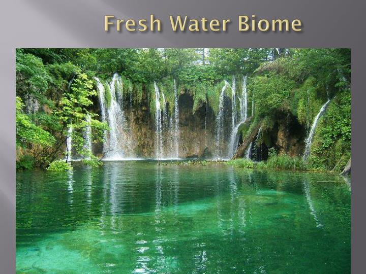 a research on water biomes Although water is the foundation of life and all life depends on water, the lack of water and extreme fluctuations in temperature are what make the desert biome a unique environment.