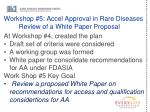 workshop 5 accel approval in rare diseases review of a white paper proposal
