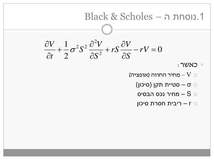 1 black scholes1