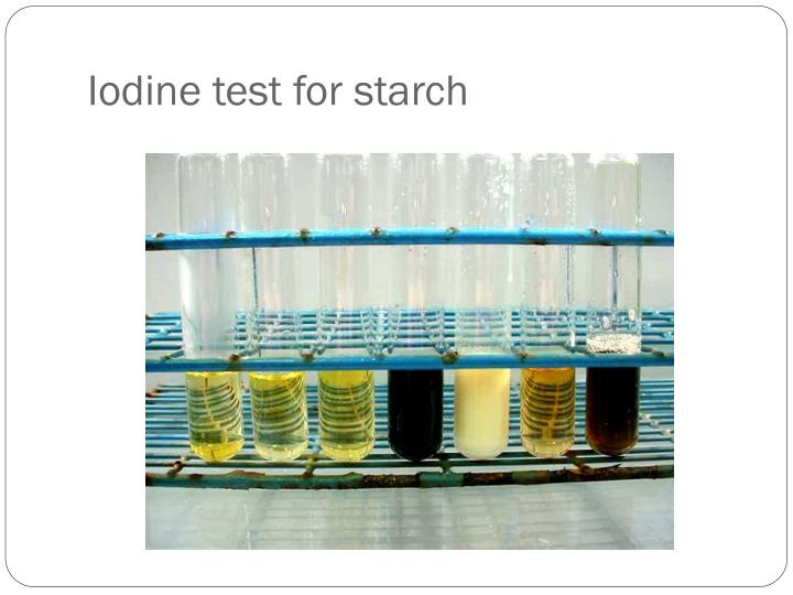 macromolecules of life testing for starch A positive test for starch would be adding iodine solution to the testing for macromolecules (2009 islands and made observasions on the animal life there.