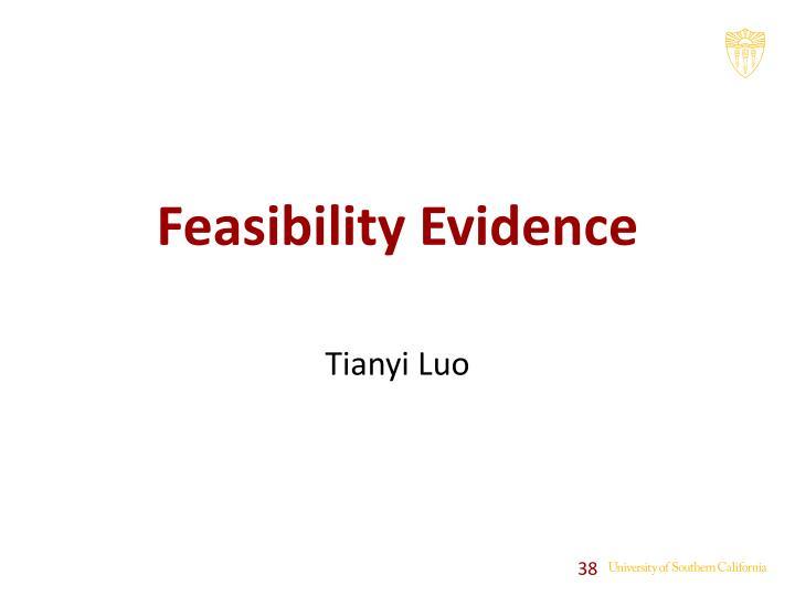 Feasibility Evidence