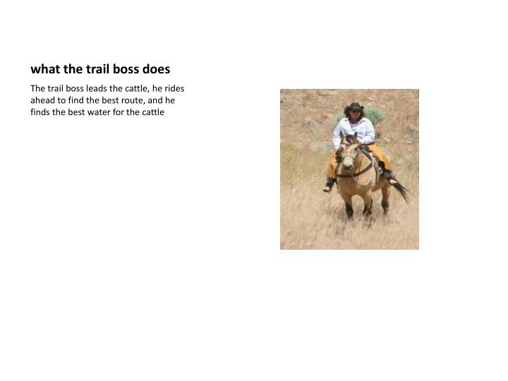 What the trail boss does