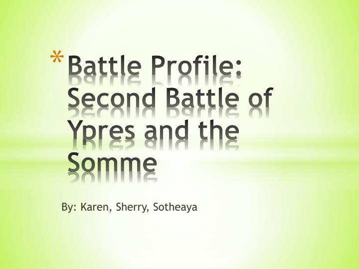 battle profile second battle of ypres and the somme n.