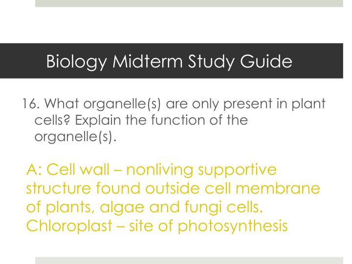 biology plants study guide study guide integrated science 10 plant unit do you/can you 1 understand that both plants and animals (eukaryotes) undergo a similar process for cellular division/reproduction.
