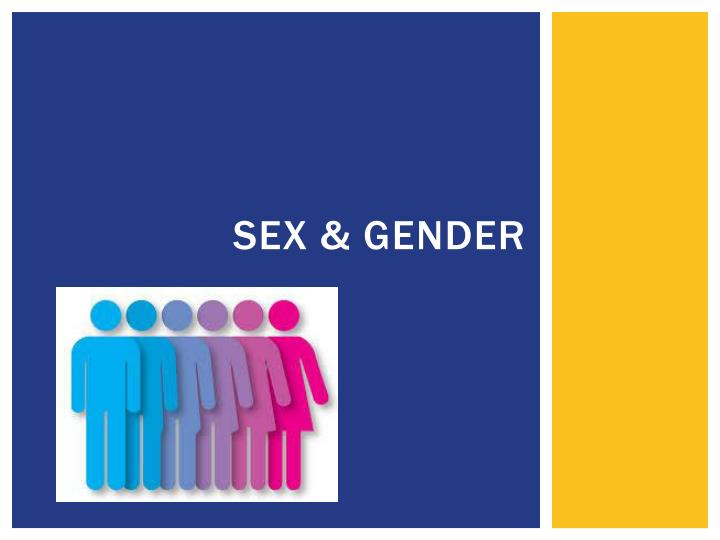 sex and gender 4 essay What is the difference between sex and gender sex = male and female gender = masculine and feminine so in essence: sex refers to biological differences chromosomes, hormonal profiles, internal and external sex organs.