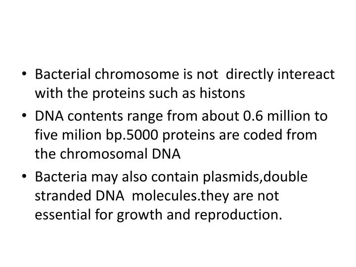 Bacterial chromosome is not  directly intereact  with the proteins such as histons