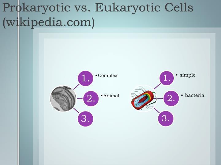 Prokaryotic vs. Eukaryotic Cells (wikipedia.com)