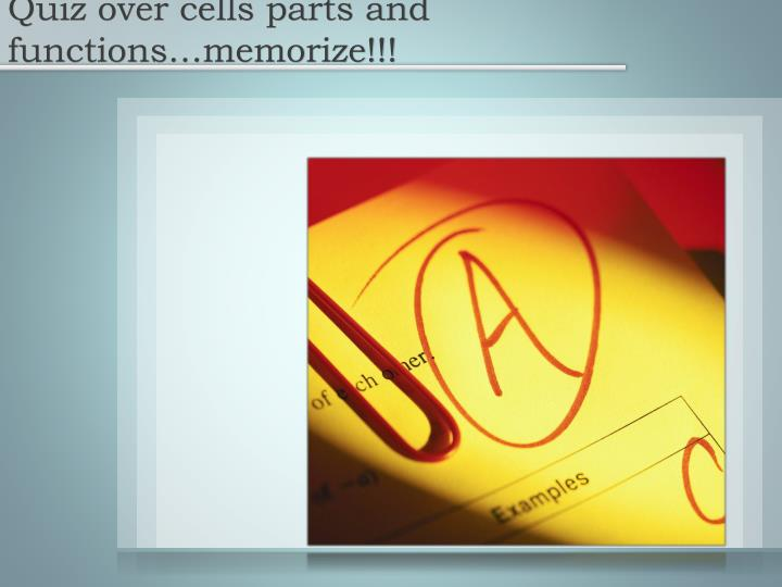 Quiz over cells parts and functions…memorize!!!