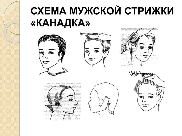 Схема модельной мужской стрижки